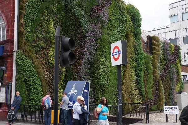 Green Wall at Edgware Road