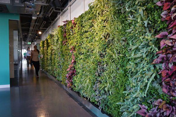 lend-lease_green_wall-2