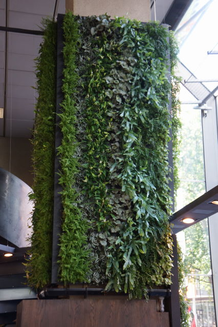 green wall at Aveda by MLD