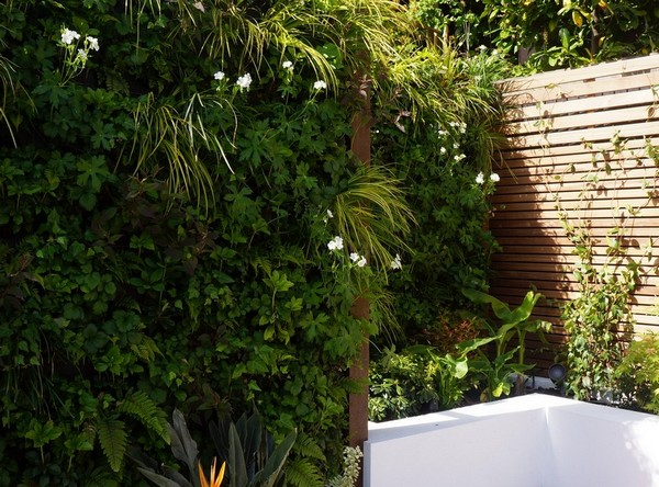 Living Wall in a small courtyard garden by Vertology