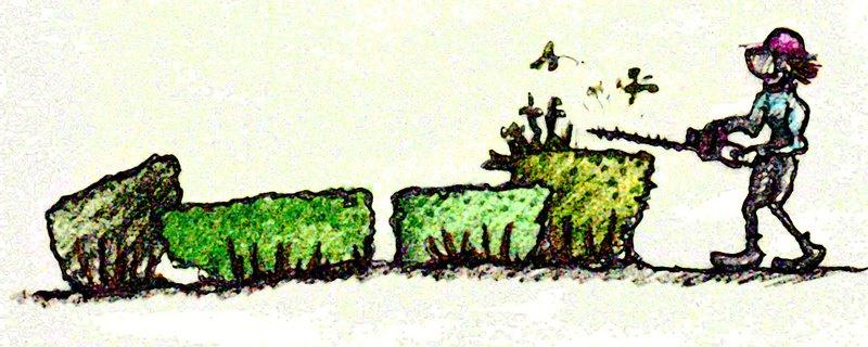 landscape lobotomy