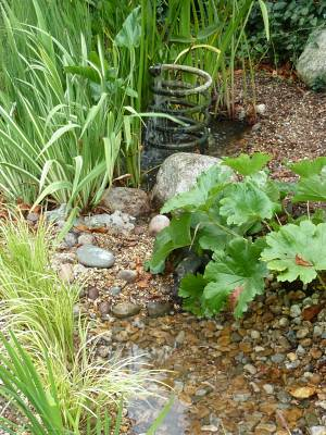 The coil is an old water heater pipe and acts as a fountain - this pond has always been there.