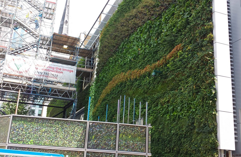 Fenchurch Street Living Wall being installed July 2014