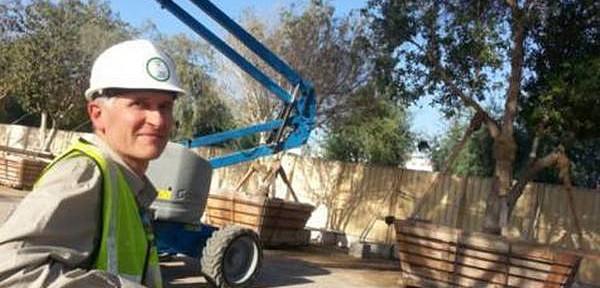 Arboriculture in the UAE