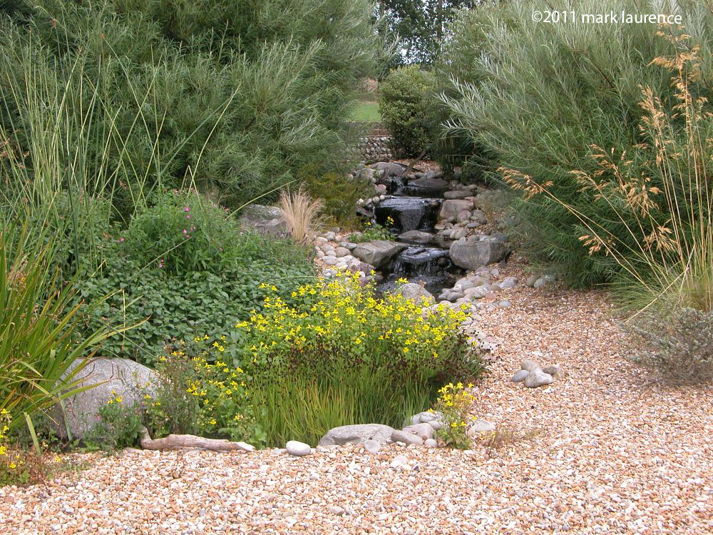 A gentle waterfall emerges from within willow bushes