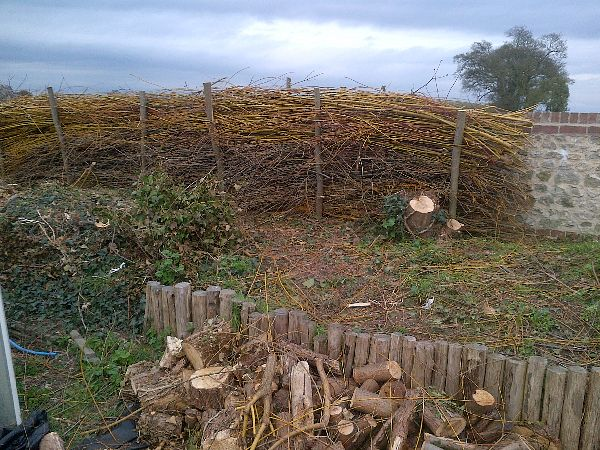 A fedge (fence-hedge) uses biomass grown in the garden to create new boundaries. good for wildlife